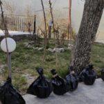 Δενδροφύτευση Κερασιών στο χωριό μας